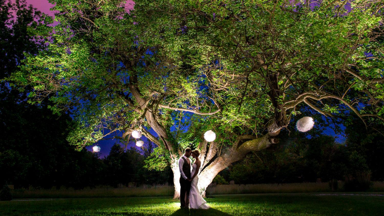 Lovely nighttime wedding portrait under a tree