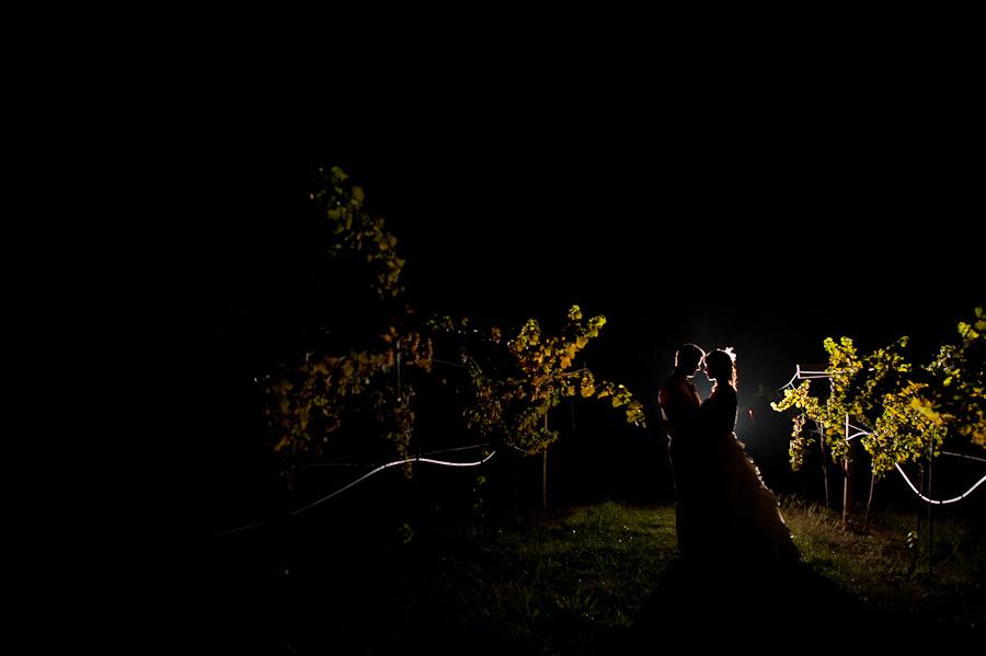 vineyard nighttime wedding portrait