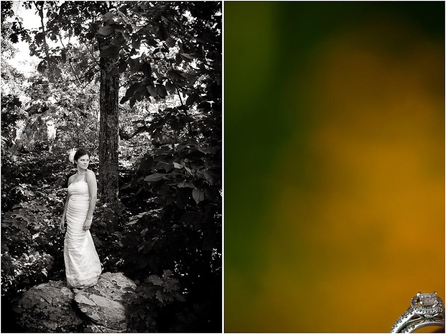 wintergreen bridal portrait