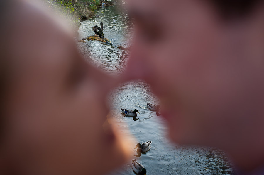 Funny engagement photo with ducks