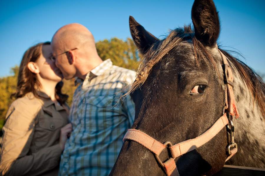 Funny horse interrupts engagement session