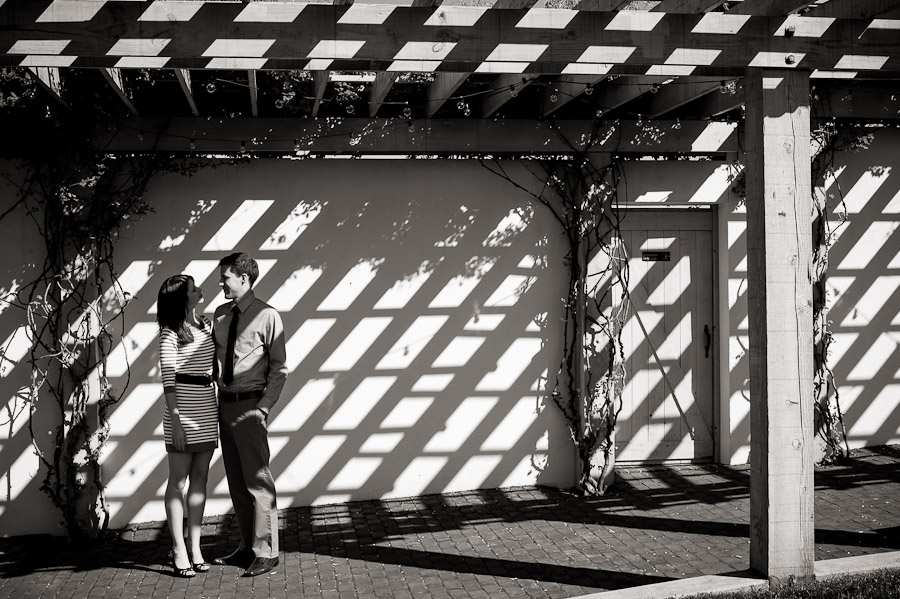 Shadow Pattern Engagement Photo at King Family Vineyard