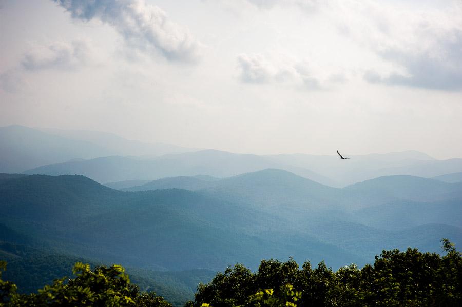 Wintergreen Mountain, Virginia