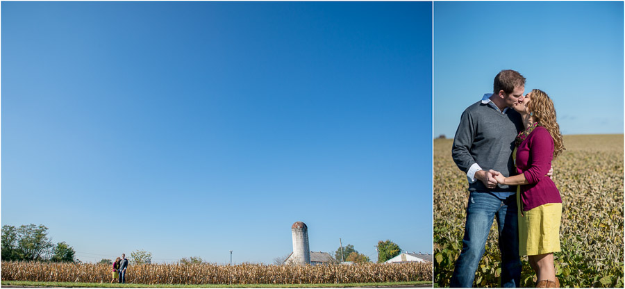 romantic and rustic engagement photos in cornfield, soy field, farm
