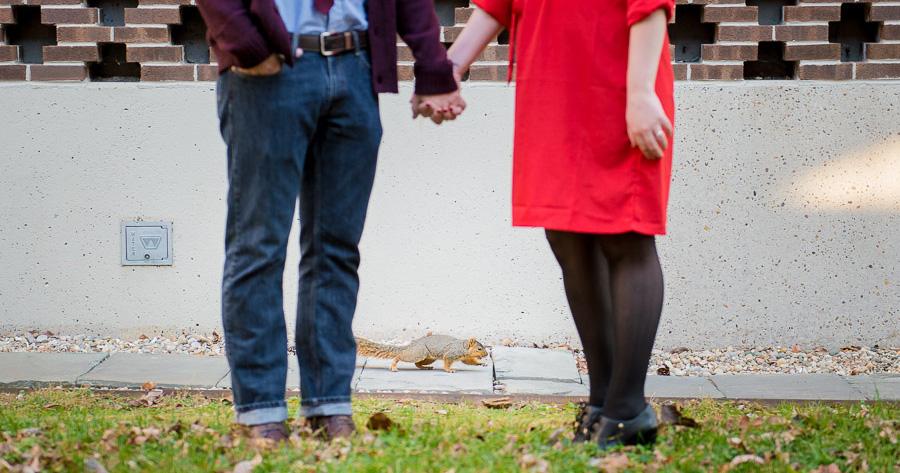 Squirrel interrupting engagement shoot