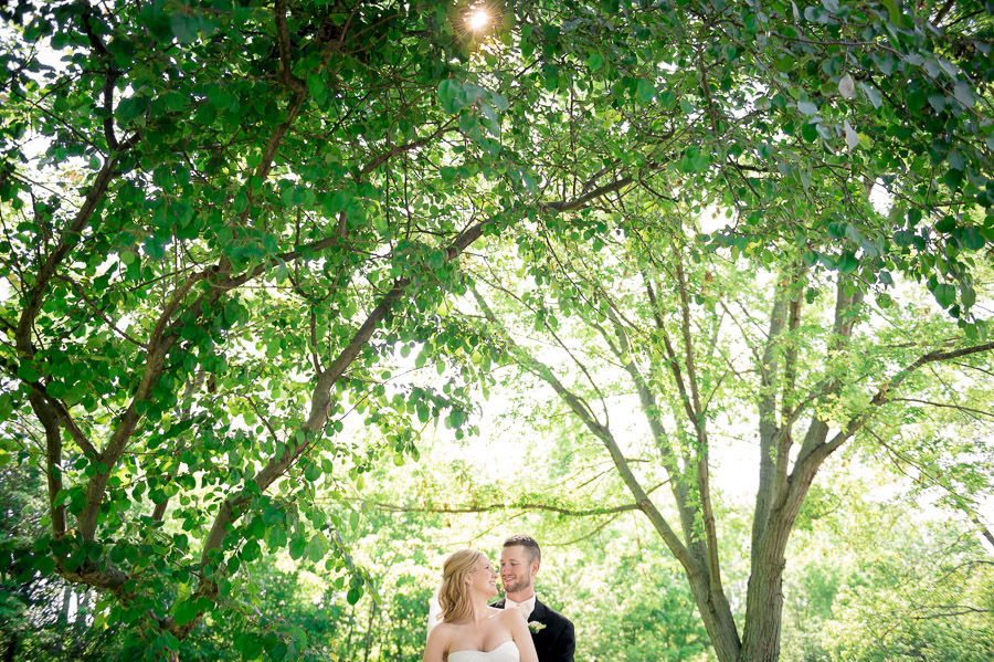 Beautiful Trees for Wedding Portrait