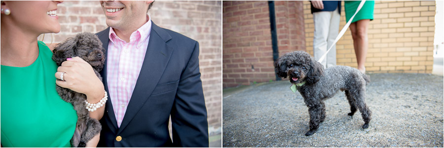 fun, creative, unique engagement photos with miniature poodle dog in Virginia