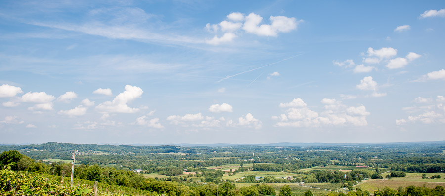 beautiful, scenic, photo at Bluemont Vineyard wedding