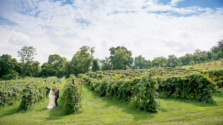 romantic and dramatic first look at Bluemont Vineyard wedding in Virginia