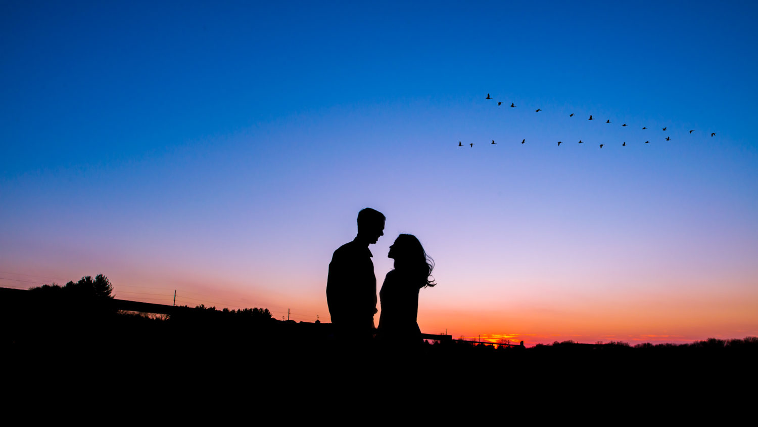 Silhouette engagement photo with flying v of geese!