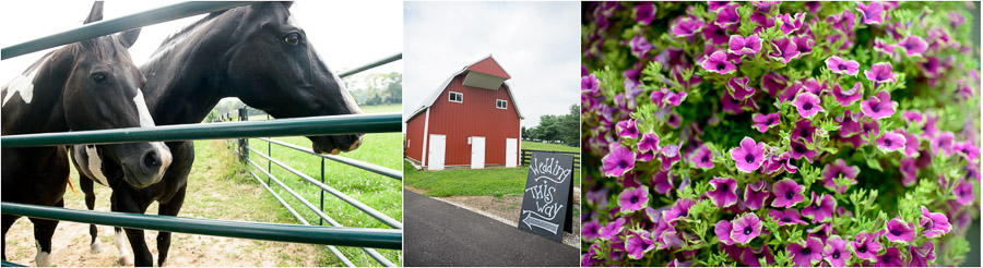 Lovely Sycamore Farm Wedding in Bloomington by TALL+small Photo.