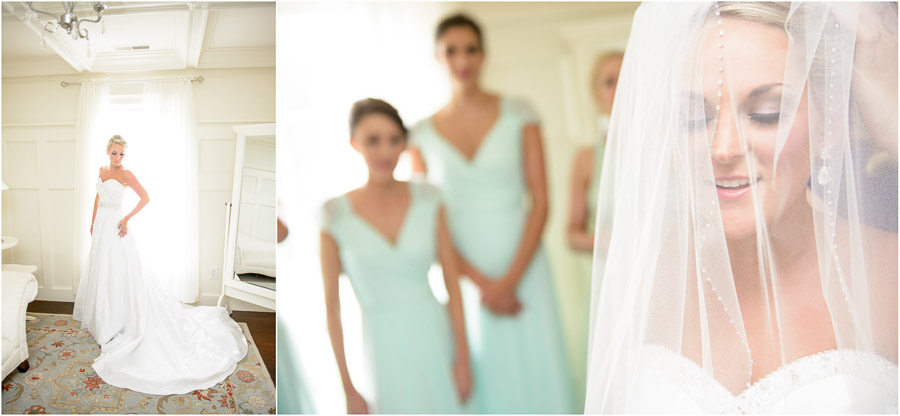 Beautiful bride at Veritas Vineyards Wedding near Charlottesville, Virginia