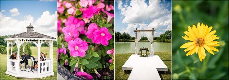 Chateau Pomije Wedding Photos