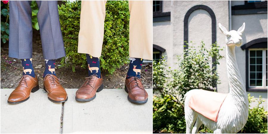 Llama Socks for Wedding