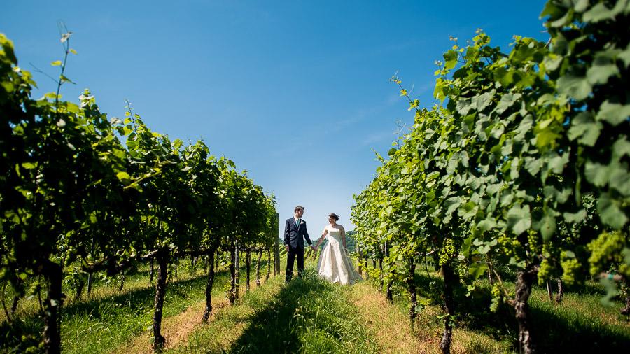 Charlottesville-Winery-Wedding-Heather-Charlie-2
