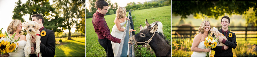 Sycamore Farm Wedding