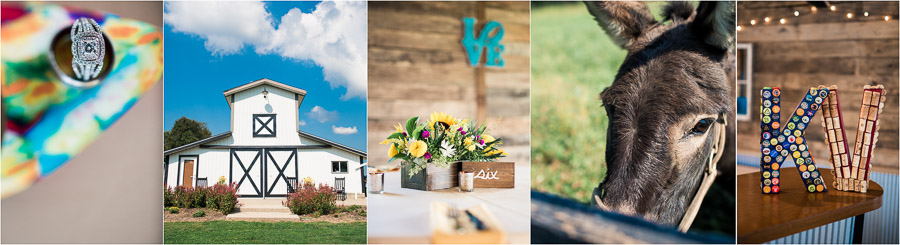 Sycamore Farm Fall Wedding Photography