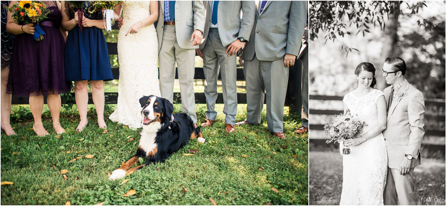 Cute Dog in Bridal Party Bloomington IN
