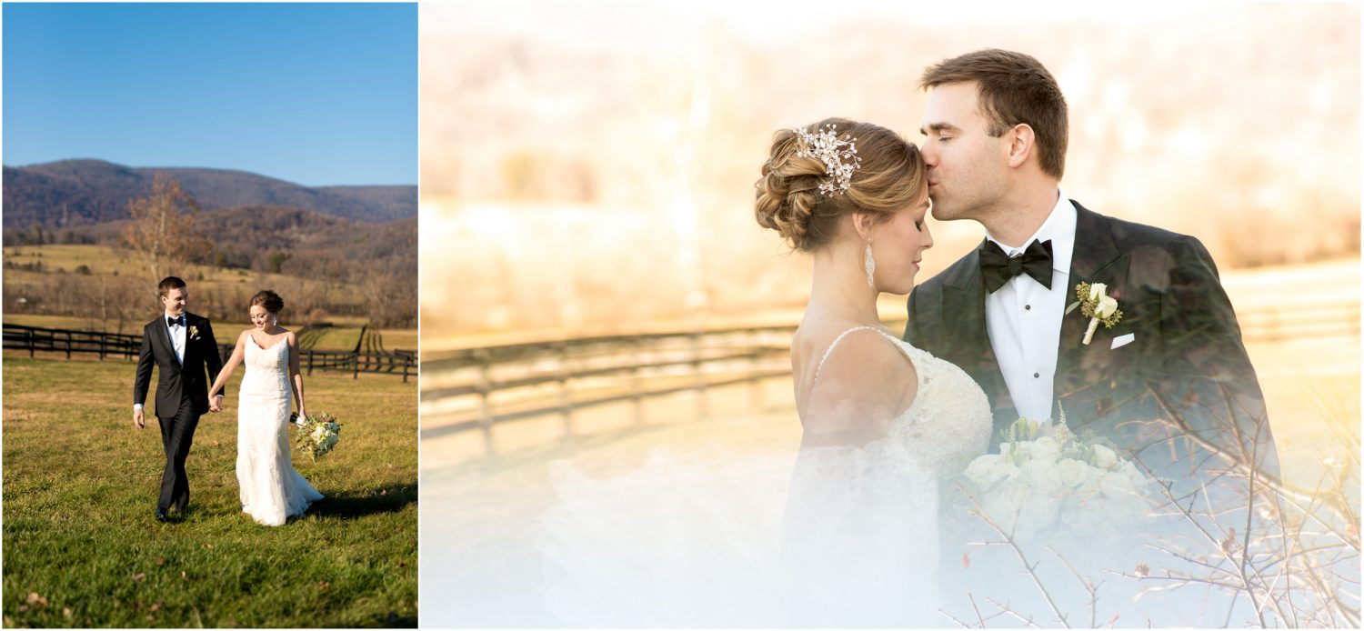 Charlottesville Wedding Portraits