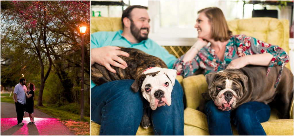 Cute bulldogs at S+T's engagement shoot.