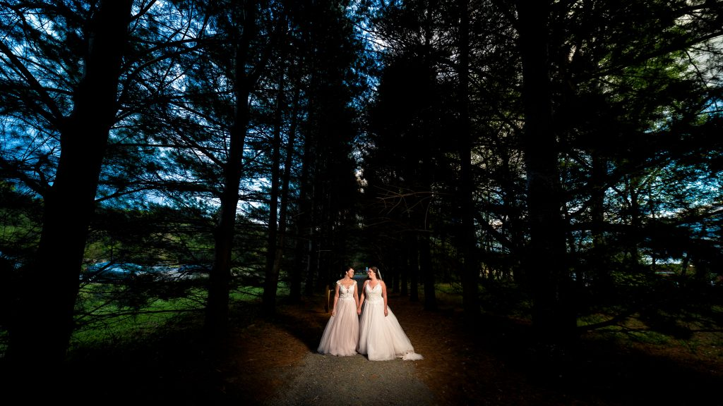 night portrait at Nelson county wedding